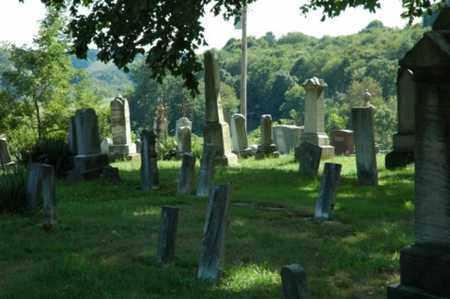 EVANS, CREEK CEMETERY - OVERALL VIEW 2 - Tuscarawas County, Ohio | CREEK CEMETERY - OVERALL VIEW 2 EVANS - Ohio Gravestone Photos