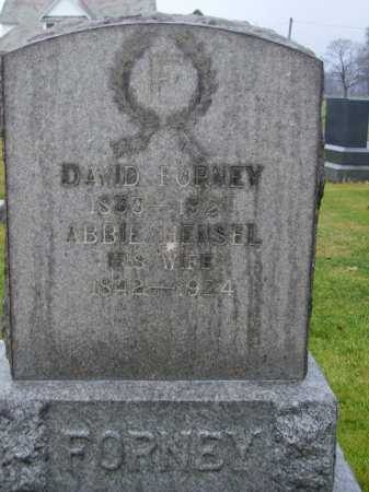 HENSEL FORNEY, ABBIE - Tuscarawas County, Ohio | ABBIE HENSEL FORNEY - Ohio Gravestone Photos