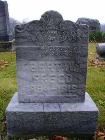 FREED, BERT W. - Tuscarawas County, Ohio | BERT W. FREED - Ohio Gravestone Photos
