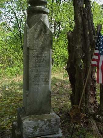 GRAY, SILAS - Tuscarawas County, Ohio   SILAS GRAY - Ohio Gravestone Photos
