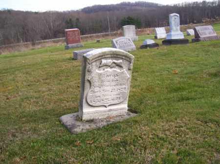 HACKENBRACHT, SARAH - Tuscarawas County, Ohio | SARAH HACKENBRACHT - Ohio Gravestone Photos