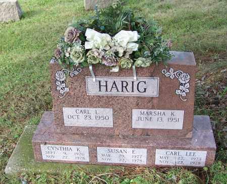 HARIG, CYNTHIA K. - Tuscarawas County, Ohio | CYNTHIA K. HARIG - Ohio Gravestone Photos