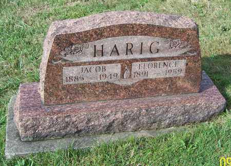 HARIG, JACOB - Tuscarawas County, Ohio | JACOB HARIG - Ohio Gravestone Photos