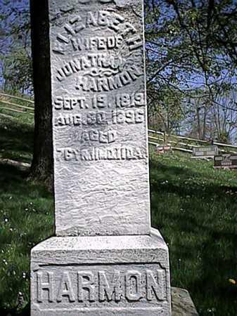 RADER HARMON, ELIZABETH - Tuscarawas County, Ohio | ELIZABETH RADER HARMON - Ohio Gravestone Photos
