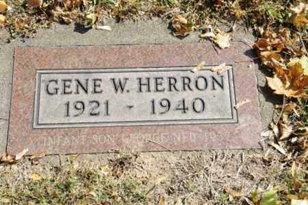 HERRON, GENE W. - Tuscarawas County, Ohio | GENE W. HERRON - Ohio Gravestone Photos