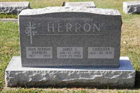 HERRON STEPHENS, JOAN - Tuscarawas County, Ohio   JOAN HERRON STEPHENS - Ohio Gravestone Photos