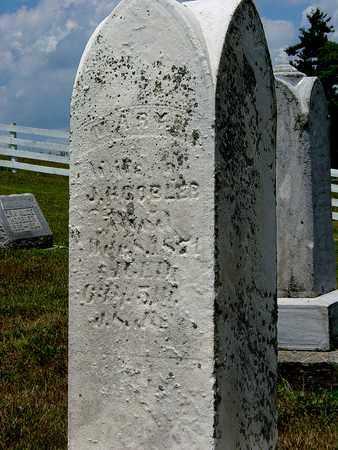 SHAWVER HOOBER, MARY - Tuscarawas County, Ohio | MARY SHAWVER HOOBER - Ohio Gravestone Photos