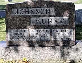 JOHNSON, DUDLEY O. - Tuscarawas County, Ohio | DUDLEY O. JOHNSON - Ohio Gravestone Photos