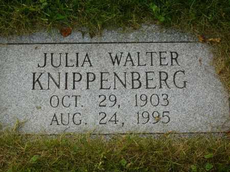 WALTER KNIPPENBERG, JULIA - Tuscarawas County, Ohio | JULIA WALTER KNIPPENBERG - Ohio Gravestone Photos