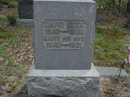 MEEK, MARY - Tuscarawas County, Ohio | MARY MEEK - Ohio Gravestone Photos
