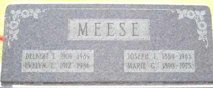 MEESE, MARIE G. - Tuscarawas County, Ohio | MARIE G. MEESE - Ohio Gravestone Photos
