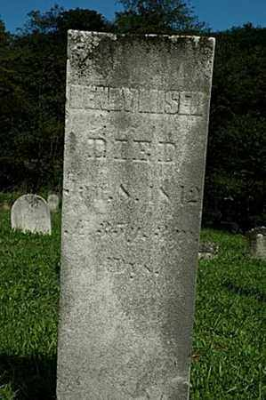 MISER, HENRY - Tuscarawas County, Ohio | HENRY MISER - Ohio Gravestone Photos