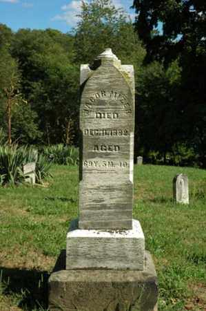 MIZER, JACOB - Tuscarawas County, Ohio | JACOB MIZER - Ohio Gravestone Photos
