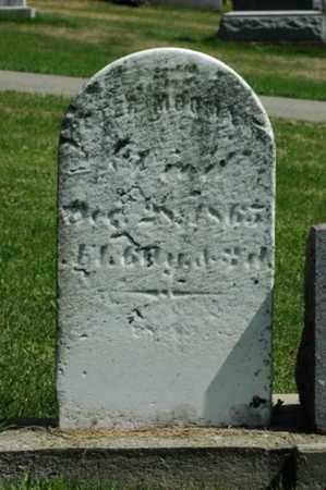 MOOMAW, PETER - Tuscarawas County, Ohio | PETER MOOMAW - Ohio Gravestone Photos