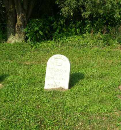 OGG, MOSES - Tuscarawas County, Ohio   MOSES OGG - Ohio Gravestone Photos