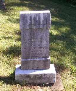 OLER, ELIZABETH - Tuscarawas County, Ohio   ELIZABETH OLER - Ohio Gravestone Photos