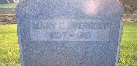 OVERHOLT, MARY E - Tuscarawas County, Ohio | MARY E OVERHOLT - Ohio Gravestone Photos