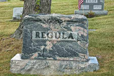REGULA, C. EUGENE - Tuscarawas County, Ohio | C. EUGENE REGULA - Ohio Gravestone Photos