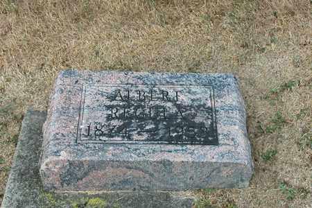 REGULA, ALBERT - Tuscarawas County, Ohio | ALBERT REGULA - Ohio Gravestone Photos