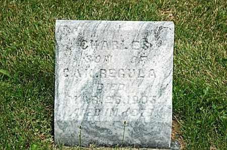 REGULA, CHARLES - Tuscarawas County, Ohio | CHARLES REGULA - Ohio Gravestone Photos