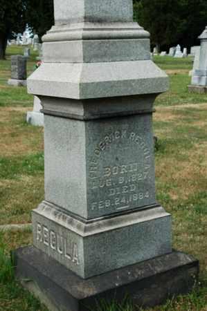 REGULA, FREDERICK - Tuscarawas County, Ohio   FREDERICK REGULA - Ohio Gravestone Photos
