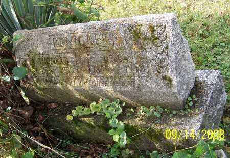WEAVER RENICKER, DELLA - Tuscarawas County, Ohio | DELLA WEAVER RENICKER - Ohio Gravestone Photos