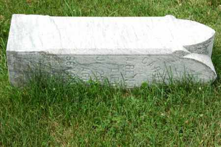 RENNER, CAROLINE - Tuscarawas County, Ohio   CAROLINE RENNER - Ohio Gravestone Photos
