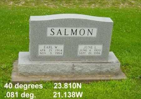 SALMON, JUNE L. - Tuscarawas County, Ohio | JUNE L. SALMON - Ohio Gravestone Photos