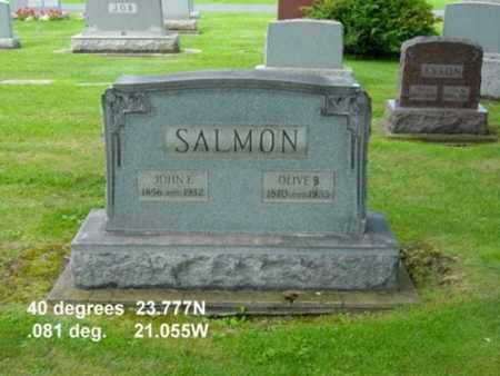 SALMON, JOHN F. - Tuscarawas County, Ohio | JOHN F. SALMON - Ohio Gravestone Photos