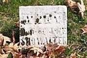 SHOWALTER, MARY - Tuscarawas County, Ohio | MARY SHOWALTER - Ohio Gravestone Photos