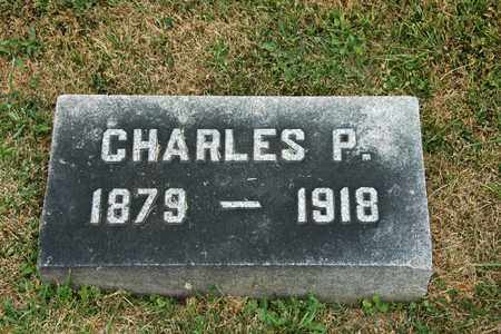 STEPHAN, CHARLES P. - Tuscarawas County, Ohio | CHARLES P. STEPHAN - Ohio Gravestone Photos