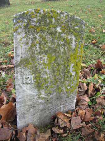 ADAMS, JOHN - Union County, Ohio | JOHN ADAMS - Ohio Gravestone Photos