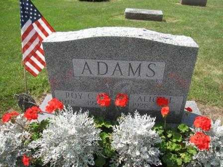 ADAMS, ALICE L. - Union County, Ohio | ALICE L. ADAMS - Ohio Gravestone Photos
