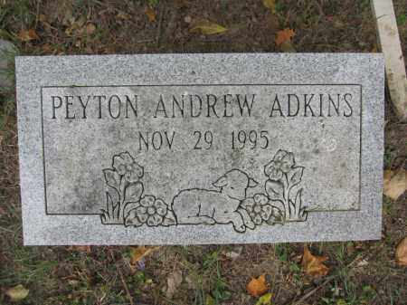 ADKINS, PEYTON ANDREW - Union County, Ohio | PEYTON ANDREW ADKINS - Ohio Gravestone Photos