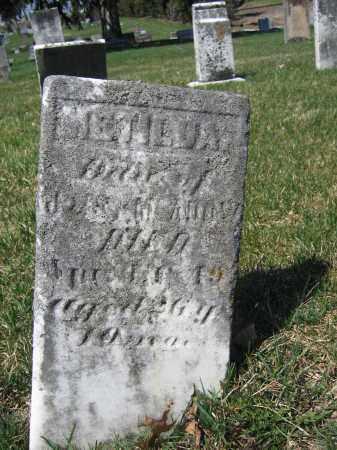 MCADOW, METILDA - Union County, Ohio   METILDA MCADOW - Ohio Gravestone Photos
