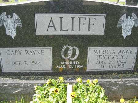 ALIFF, GARY WAYNE - Union County, Ohio | GARY WAYNE ALIFF - Ohio Gravestone Photos