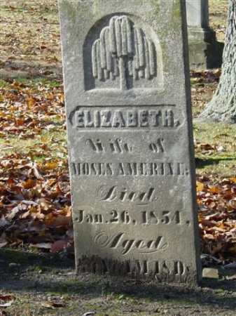 AMERINE, ELIZABETH - Union County, Ohio   ELIZABETH AMERINE - Ohio Gravestone Photos
