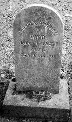 AMERINE, MOSSES - Union County, Ohio | MOSSES AMERINE - Ohio Gravestone Photos