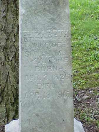 AMRINE, ELIZABETH - Union County, Ohio | ELIZABETH AMRINE - Ohio Gravestone Photos