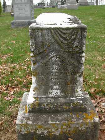 AMRINE, ETHEL - Union County, Ohio | ETHEL AMRINE - Ohio Gravestone Photos