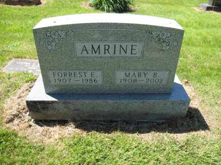AMRINE, MARY B. - Union County, Ohio | MARY B. AMRINE - Ohio Gravestone Photos