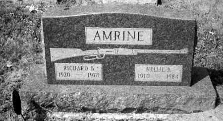 AMRINE, NELLIE B. - Union County, Ohio | NELLIE B. AMRINE - Ohio Gravestone Photos