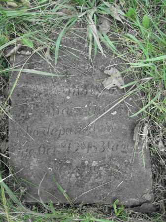 ANDREW, THOMAS - Union County, Ohio | THOMAS ANDREW - Ohio Gravestone Photos