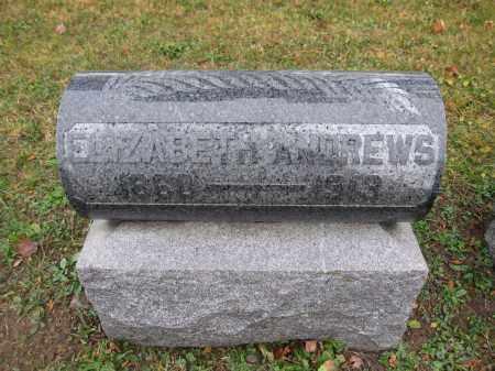 ANDREWS, ELIZABETH - Union County, Ohio   ELIZABETH ANDREWS - Ohio Gravestone Photos
