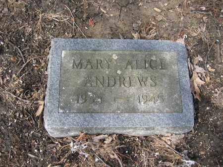ANDREWS, MARY ALICE - Union County, Ohio | MARY ALICE ANDREWS - Ohio Gravestone Photos