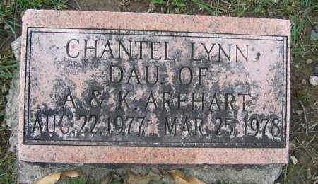 AREHART, CHANTEL LYNN - Union County, Ohio | CHANTEL LYNN AREHART - Ohio Gravestone Photos