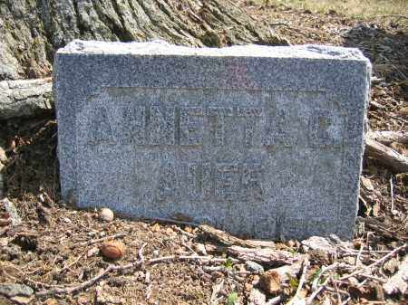 AUER, ANNETTA C. - Union County, Ohio | ANNETTA C. AUER - Ohio Gravestone Photos