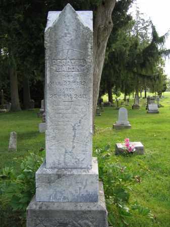 BACON, PERRY A. - Union County, Ohio   PERRY A. BACON - Ohio Gravestone Photos