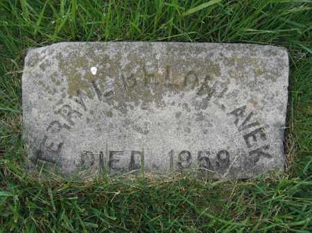 BELOHLAVEK, TERRY L. - Union County, Ohio   TERRY L. BELOHLAVEK - Ohio Gravestone Photos