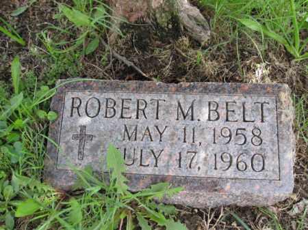 BELT, ROBERT M. - Union County, Ohio   ROBERT M. BELT - Ohio Gravestone Photos